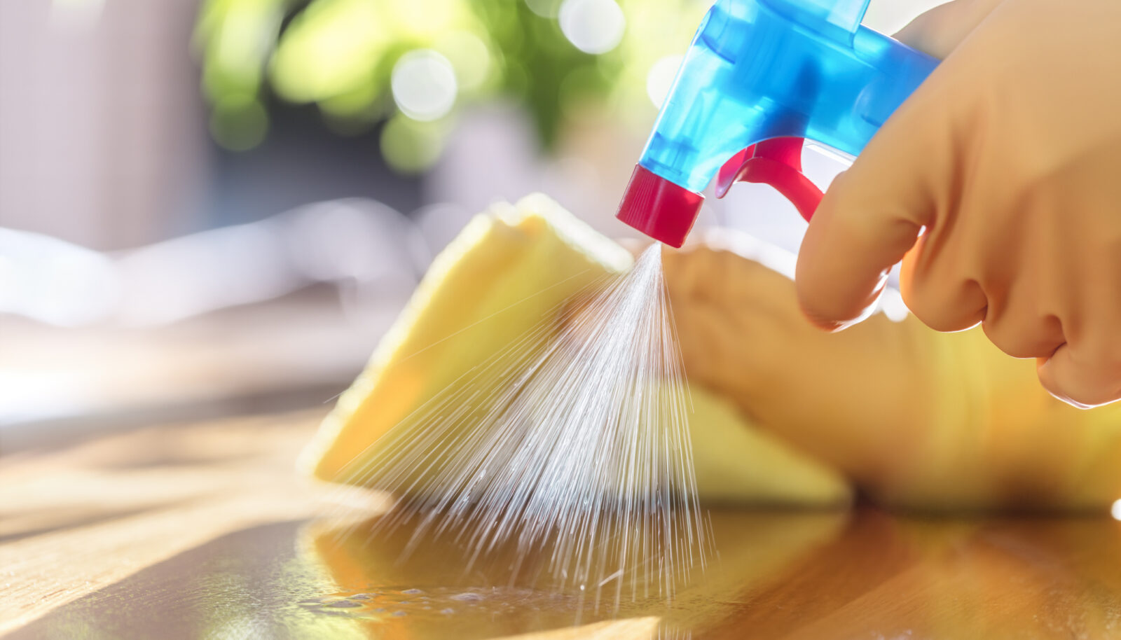 Cleaning & Sanitation Protocol